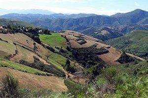 camino-frances_itinerario1
