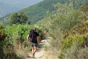 camino-frances_itinerario4