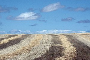 camino-fances-leon-sarria-itinerario3