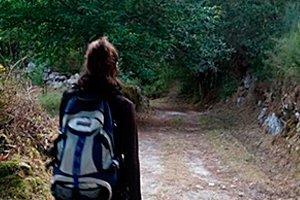 camino-fances-leon-sarria-itinerario9