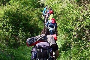 camino-frances-cruzando-galicia-itinerario1
