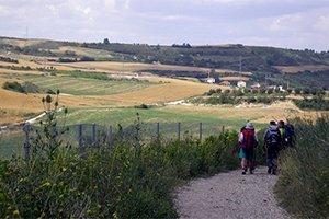 camino-frances-cruzando-galicia-itinerario5