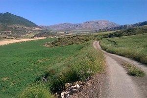 camino-frances-cruzando-galicia-itinerario6