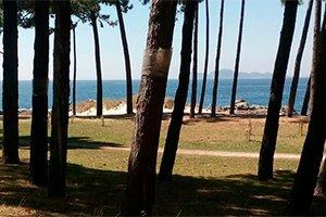 camino-portugues-costa-itinerario3