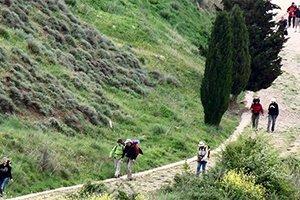 camino_frances_saint_estella_itinerario6