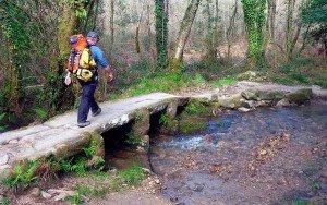 Paisaje boscoso y puente natural de piedra.