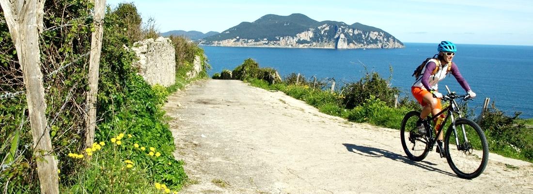 Cycling the Full Coastal Portuguese Camino